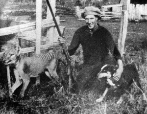 Proud Wilf Batty poses with the last wild Thylacine after he shot it
