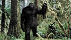 Skunk Ape, in the public domain