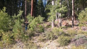 Bigfoot Lake Tahoe Sighting