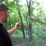 Bigfoot Stares at Man for two Minutes, Throws Rock