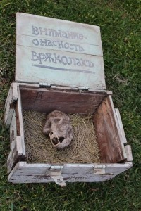 An unidentified animal skull lays inside a wooden box adorned with ciryllic text. Credit: Filip Garnov.