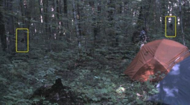 man releases pictures of two possible bigfoot creatures in