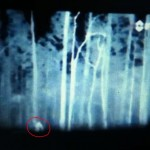 Bigfoot-Like Creature Caught on Camera in North Carolina