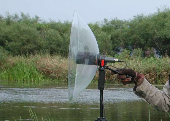 A parabolic microphone is used to record nature's sounds