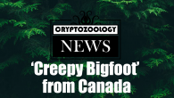 bigfoot video, canada sasquatch, canada bigfoot picture