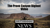 bigfoot video, sasquatch video, provo canyon sasquatch, utah bigfoot