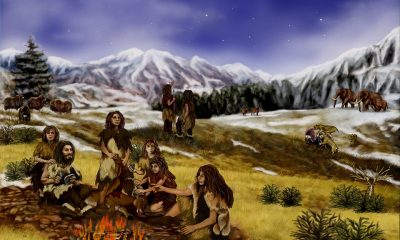 cryptozoology, bigfoot, neanderthal, neandertall, sighting