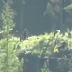 Sasquatch Spotted in Mission,BC Canada. A Video Analysis.