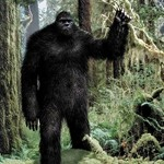 Woman: Bigfoot Walks with Me