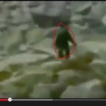 Bigfoot Footage from Poland