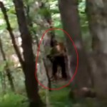 'Bigfoot' Caught on Camera in Southern Ontario
