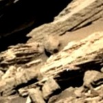 Danish Finds 'Humanoid Skull' in Mars Picture