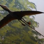 Three People Spot 'Pterodactyl' in Arizona